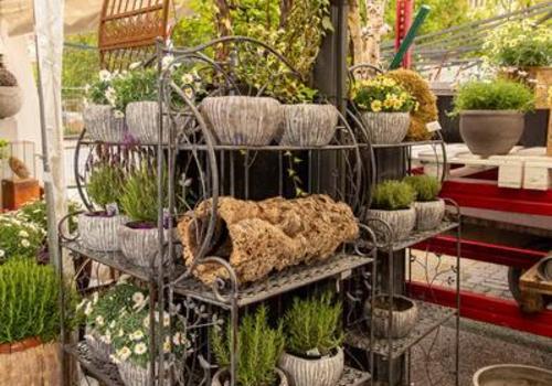 Die Floral Garage